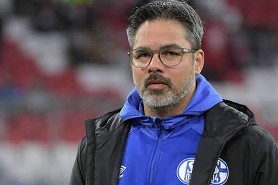 Weston McKennie returns for Schalke